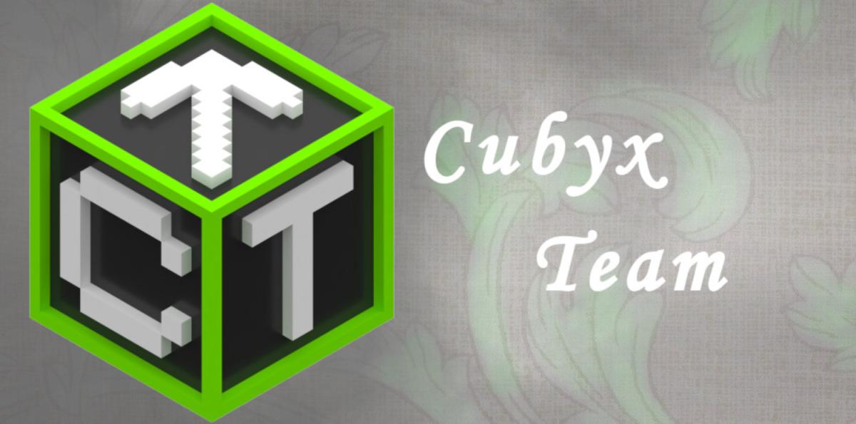Die Entstehung des Cubyx Teams